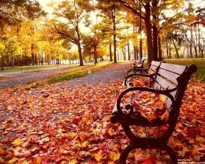 el-otoño1